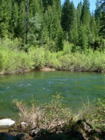McCloud River June 2010